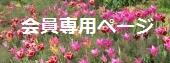 side_banner04.jpg